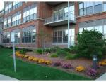 156 porter lofts landscaping 1